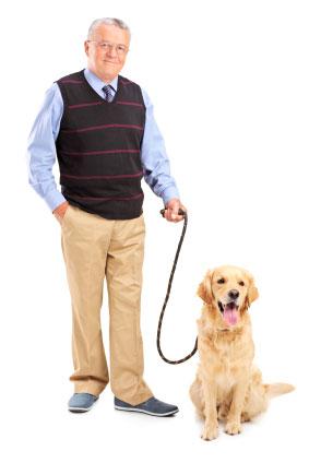 Animal de estima��o est� associado a uma redu��o de risco para doen�a card�aca